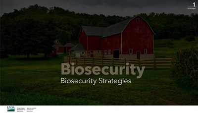 Biosecurity Strategies