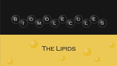 Biomolecules - The Lipids (Video)