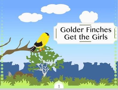 Golder Finches Get the Girls