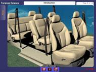 Seatbelt Evidence