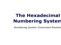 Hexadecimal Number Conversion Practice Problems