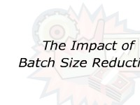 The Impact of Batch Size Reduction