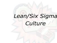 Lean/Six Sigma Culture