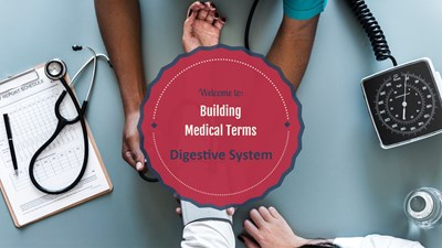 Building Medical Terms for the Digestive System