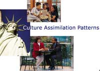 Culture Assimilation Patterns