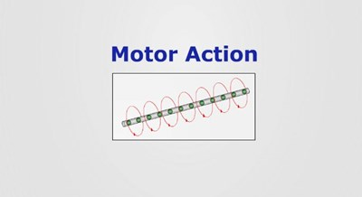 Motor Action (Screencast)