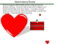 Heart Anatomy Review