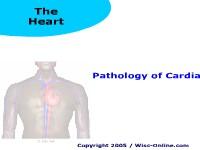 Pathology of Cardiac Disease