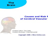 Causes and Risk Factors of Cerebral Vascular Accidents