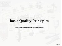 Basic Quality Principles: Process for Achieving Quality in an Organization